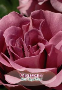 "Purple Rose ""Generosity"" from Lavie DelaRose"