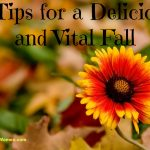 9 Tips for a Delicious and Vital Fall
