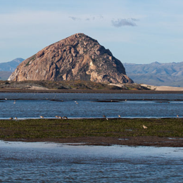 """Travel to Morro Bay California"""