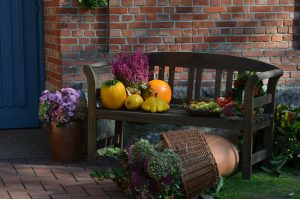 8 Tips to Create a Warm, Inviting and Healthy Home This Thanksgiving