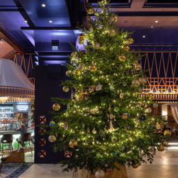 Could this be the World's Most Expensive Christmas Tree?