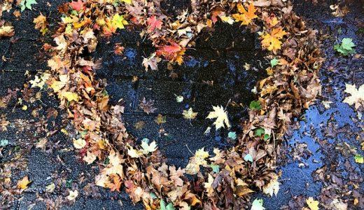 Noteworthy Ways to Enhance Autumn Life