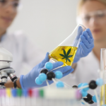 Therapeutic Effects Of Medical Cannabis That Every Women Should Know