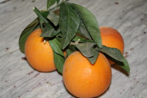 Oranges and Christmas…a Tradition