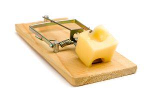 """""""build a better mousetrap"""""""