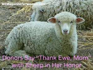 """Donors Say ""Thank Ewe, Mom"" with Sheep in Her Honor """