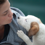Puppy love: dogs really are a man's (and woman's) best friend